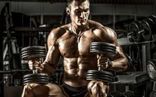 Прокачка мышц в тренажерном зале