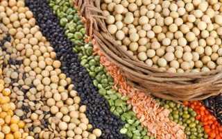 Растительный белок список продуктов таблица