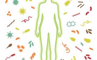 Какими причинами вызывается необходимость очищения организма