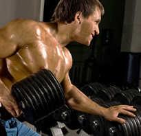 Упражнения бодибилдинг фото