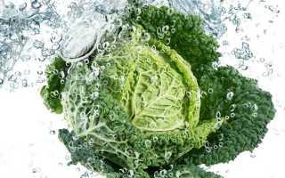 Салат из капусты для похудения рецепт