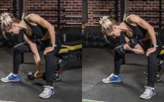 Упражнения для увеличения мышц рук