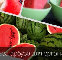 Можно ли кушать арбуз на диете