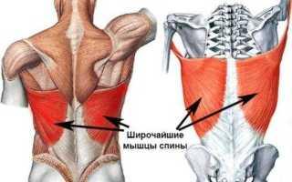 Тренировка широчайших мышц спины в домашних условиях