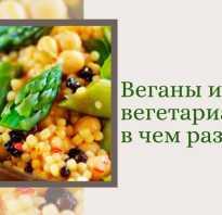 Отличие между веганом и вегетарианцем