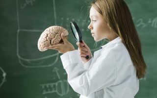 Препарат для улучшения мозговой активности