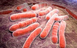 Какие витамины пить при туберкулезе