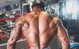 Трапеции мышцы упражнения