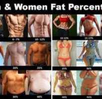 Состав тела человека в процентах таблица