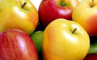 Яблочная диета на 1 день