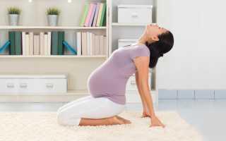Йога для беременных 1 триместр в домашних