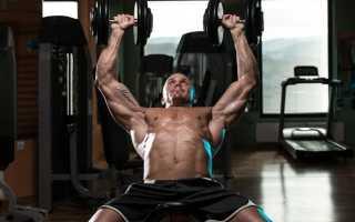Эффективные упражнение для спины и груди