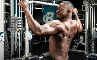 Мышцы спины упражнения для мужчин