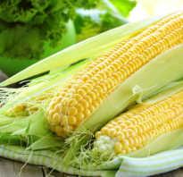 Можно ли консервированную кукурузу при диете