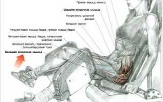 Разведение ног в тренажере какие мышцы работают