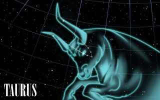 Какой знак зодиака подходит тельцам мужчинам