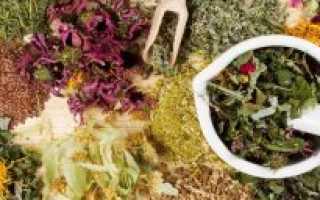 Препараты для поднятия аппетита у взрослых