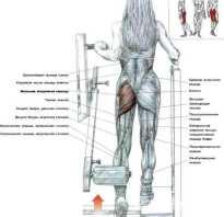 Отведение ноги назад в тренажере
