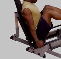Как правильно делать жим ногами на тренажере