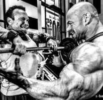 Силовые тренировки для начинающих в тренажерном зале
