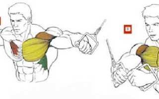 Кроссовер упражнение техника