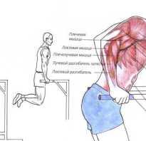 Упражнения на тренажерах для похудения рук