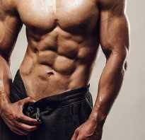 Лучшие упражнения на пресс для мужчин